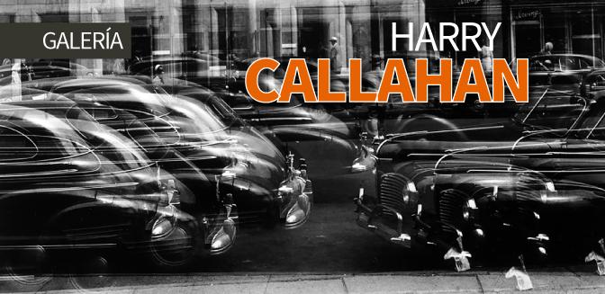 Galería: Harry Callahan