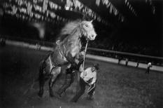Garry Winogrand Fort Worth 1974