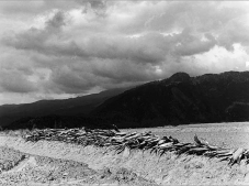 Megueyes acostados y montaña. ca 1970