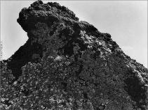 Roca cubierta de liquen. 1927-29