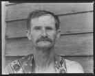 Bud Fields cotton sharecropper Hale County Alabama Walker Evans