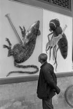 Ensayo %22El gran salto adelante%22 China 1958 Henri Cartier-Bresson 8