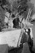 Grecia 1953 Henri Cartier-Bresson