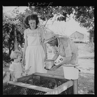 John Collier. James Drigger shows his family how to put fresh water into FSA (Farm Security Administration) wire-floored brooder Coffee County Alabama