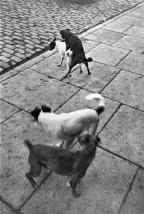 Paris 1932 Henri Cartier-Bresson.