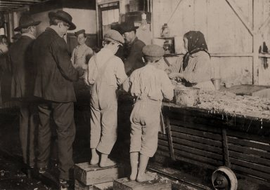 Seafood Workers- Shrimp pickers Lewis HIne