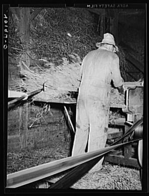 Sheldon Dick. Barto Berks County Pennsylvania Threshing on the farm of Thomas G. Evans, a FSA client