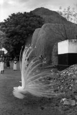 Tiruvannamalai, India 1949 b Henri Cartier-Bresson