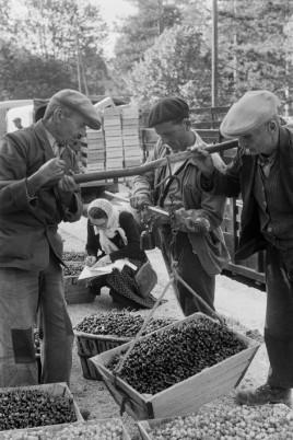 Venasque, France 1956 Henri Cartier-Bresson