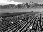 Ansel_Adams_-_Farm_workers_and_Mt._Williamson