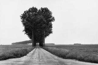 Brie, France 1964 Henri Cartier-Bresson