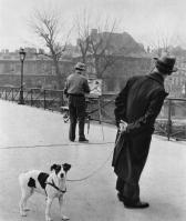 Fox terrier on the Pont des Arts Robert Doisneau, 1953
