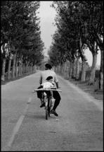 FRANCE. Provence. 1955.Elliott Erwitt