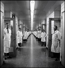 USA. New Jersey. 1966. Allied Chemical.Elliott Erwitt