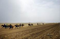 "Horses and jockeys train for the Naadam festival races outside of Ulaanbaatar. Naadam is the annual festival celebrating the ""manly games"" of wrestling, archery, and horse racing."