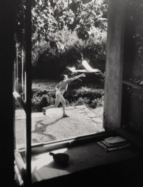 willy_ronis_7