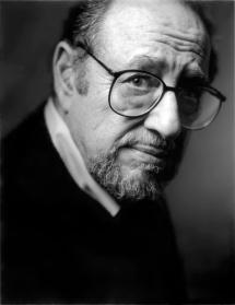 Arnold Newman, fotógrafo. Retrato por Greg Heisler