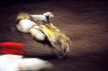 Ernst_Haas_rodeo