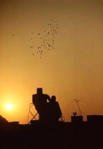 Ernst_Haas_rooftop-1