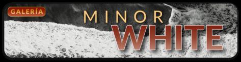 MINOR_WHITE_640X