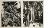 Daido Moriyama, Fragments_306