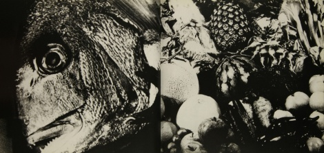Daido Moriyama, japan a Photo Theather 2_280