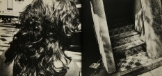 Daido Moriyama, japan a Photo Theather 2_292