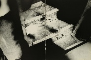Daido Moriyama, light and shadow_59