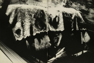 Daido Moriyama, light and shadow_64