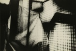 Daido Moriyama, light and shadow_90