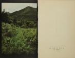 Daido Moriyama, Tales of Tohno_324