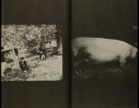 Daido Moriyama, Tales of Tohno_330