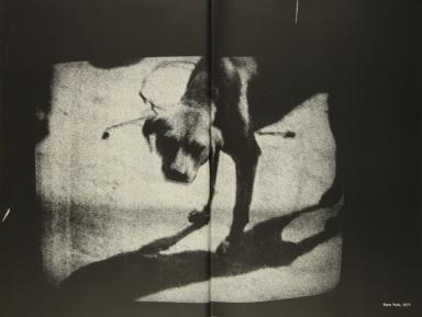 Daido Moriyama, transit_137