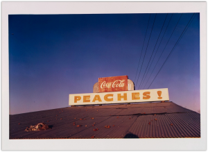 William_Eggleston_oenf_33