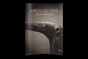 """Francisco Mata Rosas. De la serie """"Arca de Noé"""""""
