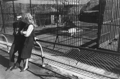 Warri_Winogrand_New York, ca. 1962_2_zoo_12