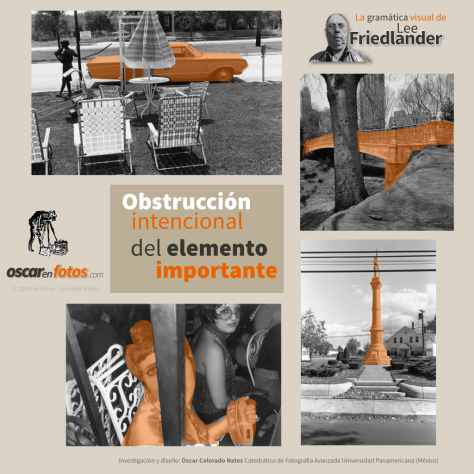 obstruccion_intencional_lee_friedlander