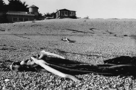 CHILE. Isla Negra. 1957.House of Pablo NERUDA, Chilean poet.