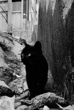 Sergio Larrain. CHILE. Valparaiso. 1963.