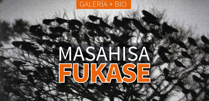 Galería: Masahisa Fukase
