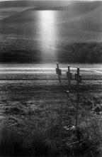 Galer 237 A Los Americanos De Robert Frank La Serie Completa