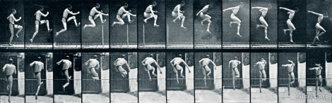 Eadweard Muybridge: Athlete. A straight high jump