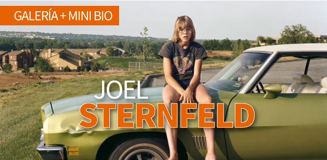Joel Sternfeld, galería