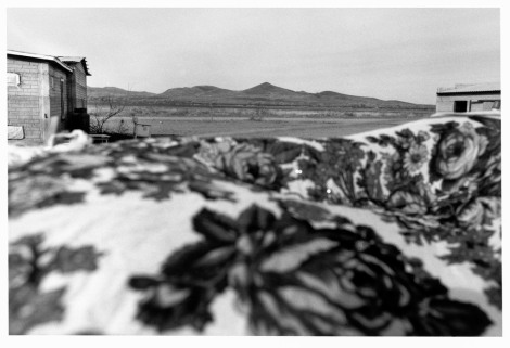 MEXICO. Chihuahua. 1999. Capulin Casas Grandes. Mennonites.