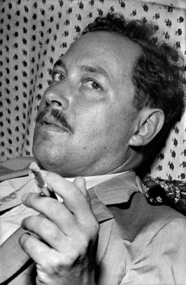 Istanbul. US playright and author Tennessee WILLIAMS.